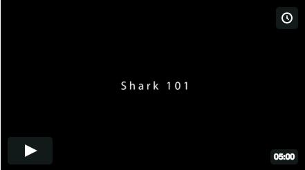 Shark 101